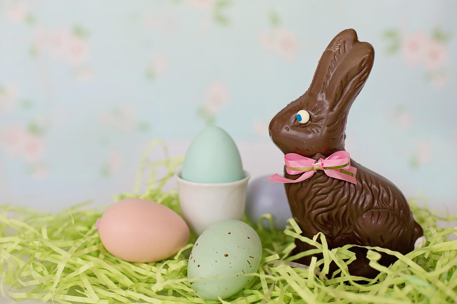 chocolate-bunny-4988644_1920