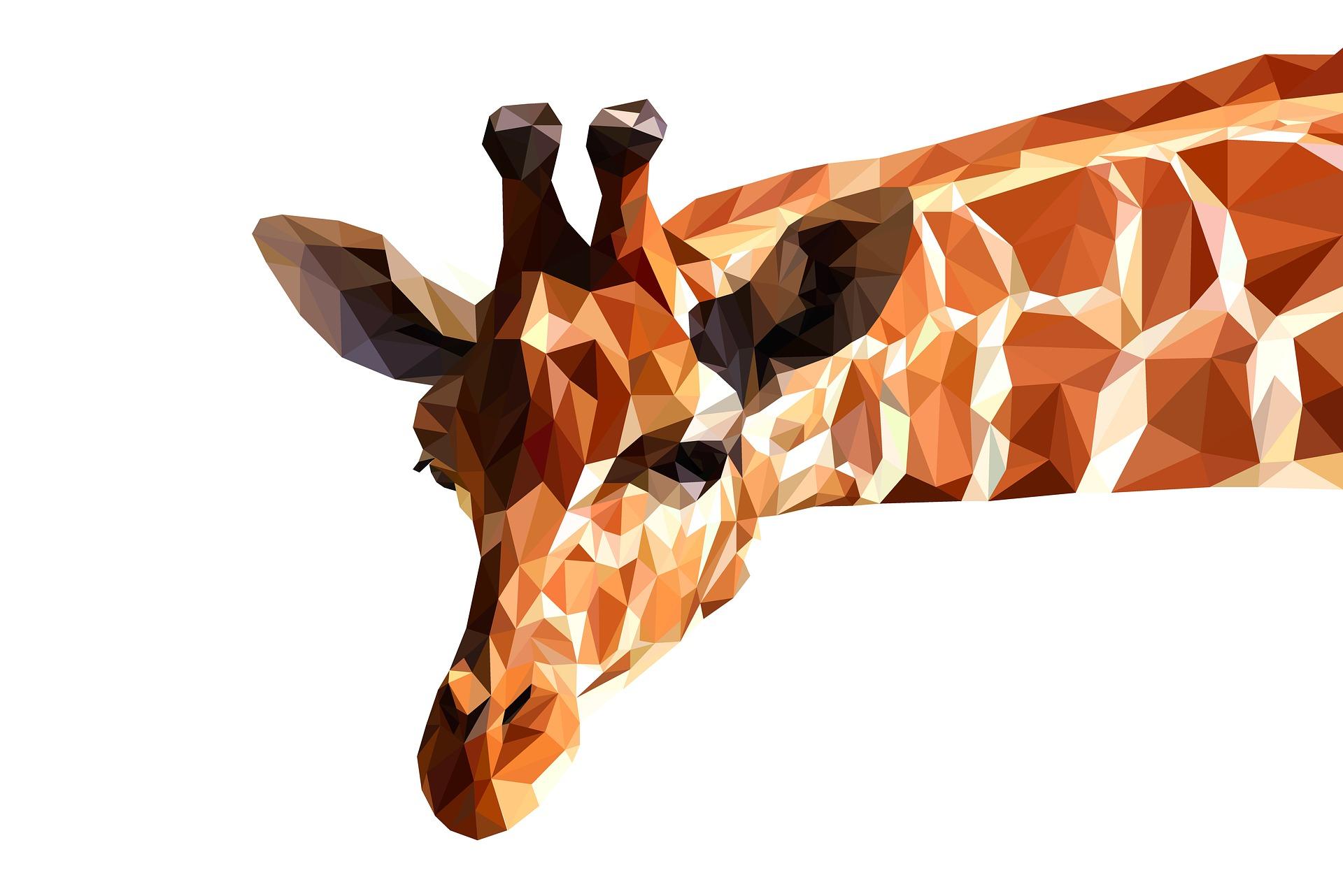 giraffe-3239743_1920